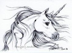 Pretty Unicorn Fantasy Ballpoint Pen Drawing Original ACEO Art by Tanya London. Join in with the chance to win my Christmas 2013 giveaway on my FB page. www.Facebook.com/TanyaLondon.Art