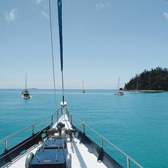 Come onboard for the Clipper of a time! #sailingwhitsundays #mrtravel #whitsundays #visitairlie Sailing Whitsundays, The Whitsundays, Hamilton Island, Airlie Beach, Blue Pearl, Great Barrier Reef, Days Out, Daydream, San Francisco Skyline