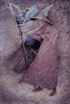 Valonia Gulfoss - Wildwood Witches -Art by Steve Hutton