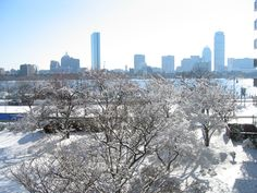 Things to Do in Boston in the Winter 2016