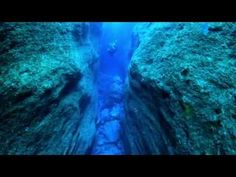 Dive the Azores - #video by Nuno Sá for Atlantic Ridge Productions 20.01.2015 | Official video developed for the Azores Tourism Bureau to promote Scuba Diving in the azores.  #portugal