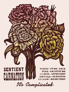 Sentient Carnation ~ Martin Mazorra's Language of Flowers, Duet Series ~ Color Woodcut and Letterpress print, 18 x 24 inch, French's 100 lb. Cover, Insulation Pink. Handcut, Handprinted with moveable type. Edition of 20.