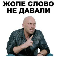 Hello Memes, Happy Memes, Cute Animal Memes, Fun Live, Meme Pictures, Mood Pics, Work Memes, Stupid Memes, Funny Relatable Memes