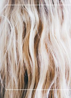 Ayurvedic Balancing Hair Oil | Free People Blog #freepeople