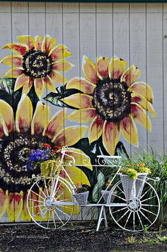 Painted Sunflowers on the barn and a bicycle flower pot.