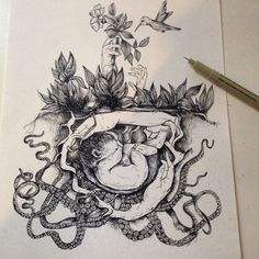 Nature illustration ink  © Alfred Basha