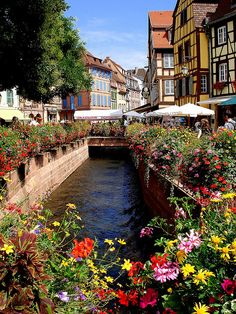Colmar, France. We stayed in the bright yellow building with the brown trim!