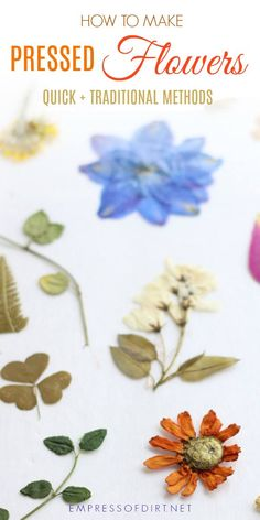 How to preserve your favorite flowers and leaves as pressed botanicals for keepsakes and craft projects. Includes new quick method and traditional methods. Dried And Pressed Flowers, Pressed Flower Art, Dried Flowers, Diy Garden Projects, Garden Crafts, Craft Projects, Garden Ideas, Craft Ideas, Plant Crafts