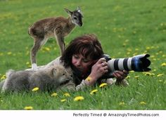 Look at us – When the animals want you to get that close up shot. | Amazingly Timed Photos