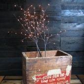 It's a light, it's a branch -- it's both!
