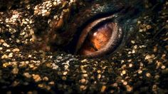 smaug dragon the hobbit | Special 'Dragon' TV Spot' - The Hobbit 2 : The Desolation of Smaug ...