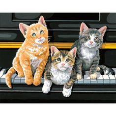 Dimensions Needlecrafts Paintworks Paint By Number, Musical Trio by Dimensions, http://www.amazon.ca/dp/B0006FUG7G/ref=cm_sw_r_pi_dp_P2Cotb18MR423