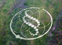 Crop Circle in South Korea, June 12, 2008. Crop Circles, Círculos en los cultivos