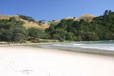 A private farm at the north end of Whangapoua Beach on the Coromandel Peninsula. Just a short drive from Auckland.