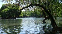 Parácuaro, ciudad de aguas cristalinas | Hasta que te conocí
