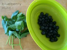 blueberry mint infused water - perfectly refreshing for summer!