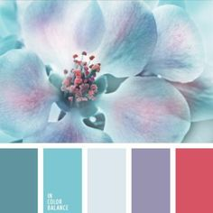soft patette color swatches, aqua, teal, lavender, coral