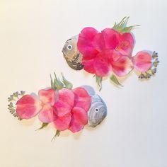 #inspiration #floral #flower #inspirationfloral #rose #pink #fish #shells #nature @natgeo @arts_help @art.fashion.inspiration #art #artwork @instagram