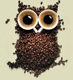 Coffee beans owl.  for the owl lover and the coffee lover.  cute too