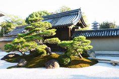 #京都#東寺#観智院 #枯山水#松#庭園 #japan_of_insta #wu_japan #instakyoto #instagramjapan