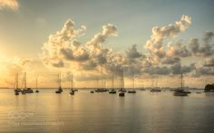 Sailboats in the sunrise by CarlosCocoMoni #architecture #building #architexture #city #buildings #skyscraper #urban #design #minimal #cities #town #street #art #arts #architecturelovers #abstract #photooftheday #amazing #picoftheday