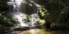 Reedy Branch Falls in South Carolina's Oconee County a short walk from US 76, but not well marked
