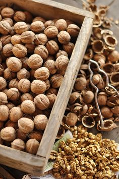 walnuts by photos by raindrop on Flickr.