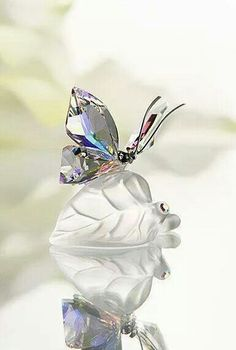 Swarovski Sparkling Butterfly This delicate butterfly in faceted Crystal Aurora Borealis daintily flutters over a matte crystal leaf. The silver-tone metal antennae create an interesting play of elements. Swarovski Crystal Figurines, Swarovski Crystals, Bijou Box, Glass Figurines, Glass Toys, Crystal Collection, Faceted Crystal, Beautiful Butterflies, Jewelery