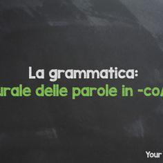 Learn Italian grammar: plural form of the Italian words ending in -co /-go