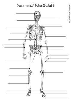 Endlich Pause 2.0: AB zum Skelett