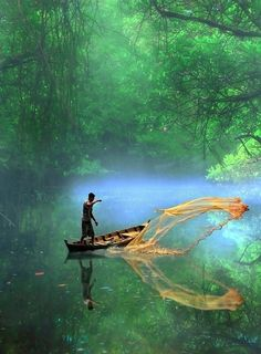 The captivating list of best places in Kerala that you have to visit in this lifetime.Visit all these tourist places in Kerala & make your trip memorable. The Places Youll Go, Places To See, Beautiful World, Beautiful Places, Wonderful Places, Photo Humour, Amazon Rainforest, Olympic Rainforest, India Travel