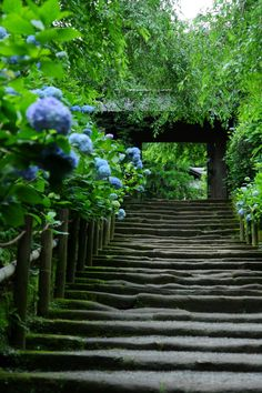 Image about nature in japan💖 by Matsuki on We Heart It Japan Landscape, Japan Garden, Studio Background Images, Go To Japan, Kamakura, Japanese Culture, Places Around The World, Japan Travel, Pathways