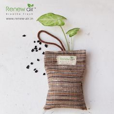 RenewAir Purifier Bag covers areas up to 50 square feet. Excellent for small spaces such as cars, closets, bathrooms, small office cabin, pet areas children area laundry rooms. Portable Air Purifier, Pet Safe, Small Office, Eco Friendly, Reusable Tote Bags, Laundry Rooms, Pets, Square Feet, Closets