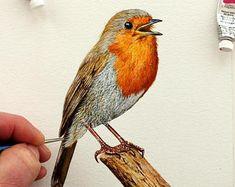 Robin, Watercolour Painting, Original Painting, Illustration Art, Bird Artwork, Watercolor Birds, Wildlife Animals