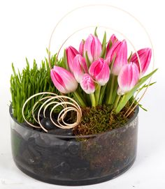 Try this one for Spring!