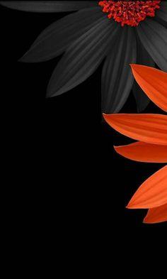 Flower Background Wallpaper, Flower Phone Wallpaper, Flower Backgrounds, Art Background, Galaxy Wallpaper, Wallpaper Backgrounds, Phone Wallpapers, Flamingo Wallpaper, Colorful Wallpaper