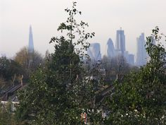 Looking west from Leytonstone. Photo Martin Sepion.