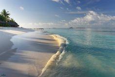Картинки лето, море, пляж, пальмы, отдых на рабочий стол » Лето
