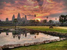 베트남 앙코르와트. 가보고 싶다