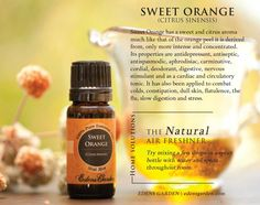 Invite the outdoors inside with our fresh and lively Sweet Orange Essential Oil, one of our favorites here at Edens Garden. It freshens up any home, office or car and boosts mood and mind!