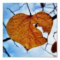 Broken Leaf, Broken Heart