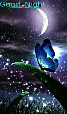 My wallpaper for home (original. Butterfly Wallpaper, Butterfly Art, Galaxy Wallpaper, Butterfly Quotes, Beautiful Nature Wallpaper, Beautiful Moon, Beautiful Landscapes, Cute Wallpaper Backgrounds, Pretty Wallpapers