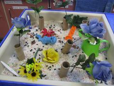 plants and flowers unit sensory bin rice, seeds (beans), silk flowers and tp rolls for vases, spoons, scoops