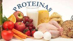 La importancia de las Proteínas y Albúmina