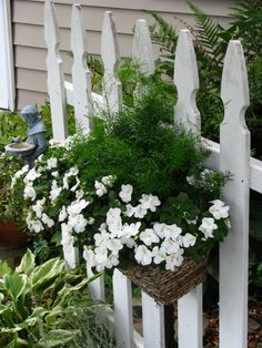 wonderful basket of flowers on white picket fence. So pretty.