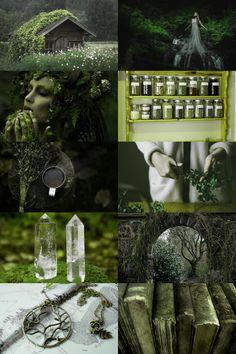 skogsrån