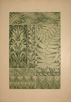 Seder Botanical Print