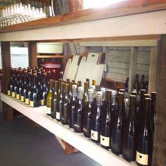 New winery Southold Farm