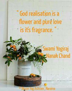 #swami  #yogiraj #nanak #chand #dehypnotic #meditation #quotes #swamiyogirajnanak  #sayings