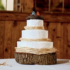 Bird's Nest Rustic Wedding Cake… Take the birds off. Love the simplicity on the wood log! Photo CreditSometimes less is more on your rustic wedding cake when you have so many other rustic details that make up your wedding theme. Southern Wedding Cakes, Wedding Cake Rustic, Rustic Cake, Rustic Weddings, Cake Wedding, Wedding Reception, Beautiful Cakes, Amazing Cakes, Wedding Ideias